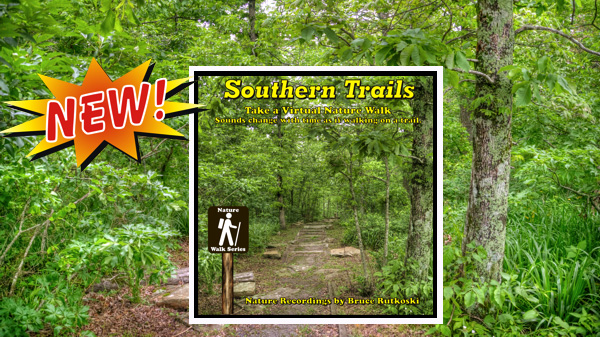 New Album: Southern Trails. Take Virtual Walks through Texas, Arkansas, and Oklahoma.